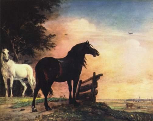Pferde auf der Weide Rijksmuseum